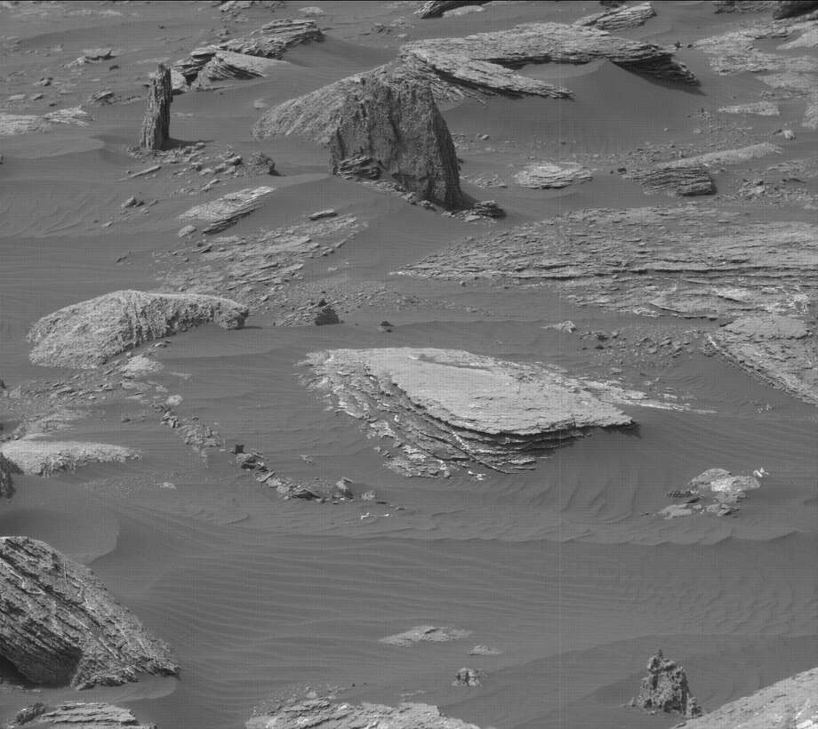 A petrified tree on Mars?NASA's caption: This image was taken by Mastcam: Left (MAST_LEFT) onboard NASA's Mars rover Curiosity on Sol 1647 (2017-03-25 07:19:49 UTC). Photo: NASA/JPL-Caltech/MSSS