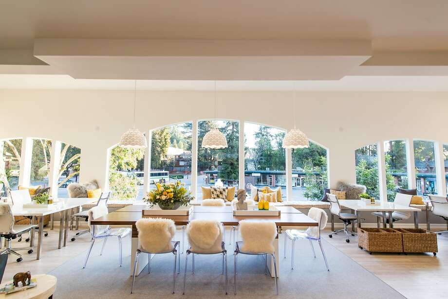 The Hivery's expansive, light-filled space overlooks downtown Mill Valley. In late March, Wayfair, the home-furnishings website, announced the winners of its annual design competition. Among more than 10,000 submissions, the Hivery won for best office space. Photo: Jacquelyn Warner