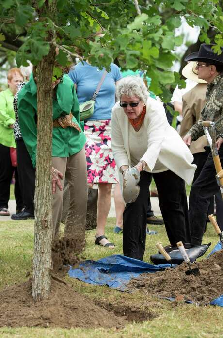 Ann Hamilton, right, helps plant a bur oak tree in honor of environmentalist and philanthropist Terry Hershey at the Eleanor Tinsley Park on Tuesday. Hamilton said she was a close friend of Terry's for about 30 years. Photo: Godofredo A. Vasquez, Houston Chronicle / Godofredo A. Vasquez