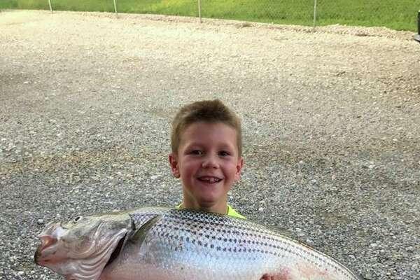 "Lake Tawakoni State Park : ""Cason Kuhn, 7, of Canton, Tx, caught this monster 23.90 lb striped bass off a rod and reel on Lake Tawakoni on April 12, 2017. Way to go Cason!!!"""