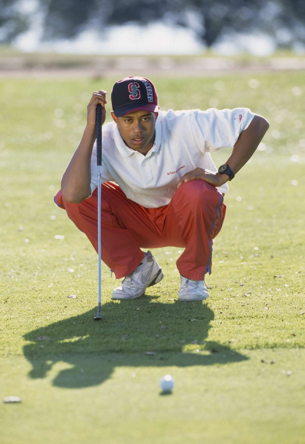 Tiger Woods: (golfer) Major:Economics Fun fact:Woods played golf at Stanford but dropped out after two years and become a pro.