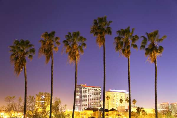 Downtown San Jose skyline with palm trees at night. San Jose is the third-largest city in California, the tenth-largest in the United States. In the heart of  Silicon Valley San Jose is considered to be a global city. San Jose is known for its technology industry, great golf courses, and short drive to wineries