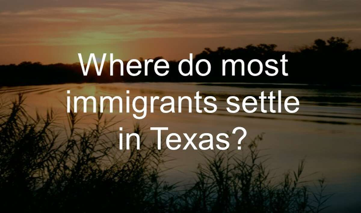 Where do most immigrants settle in Texas?