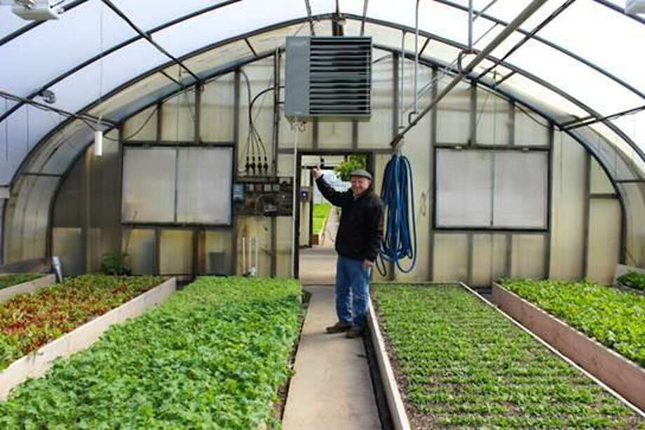 Sal Gilbertie of Gilbertie's Herb Gardens, a fourth-generation local family farm that utilized grants and financial incentives to make major upgrades to operations, saving about $27,000 annually. Photo: Contributed Photo
