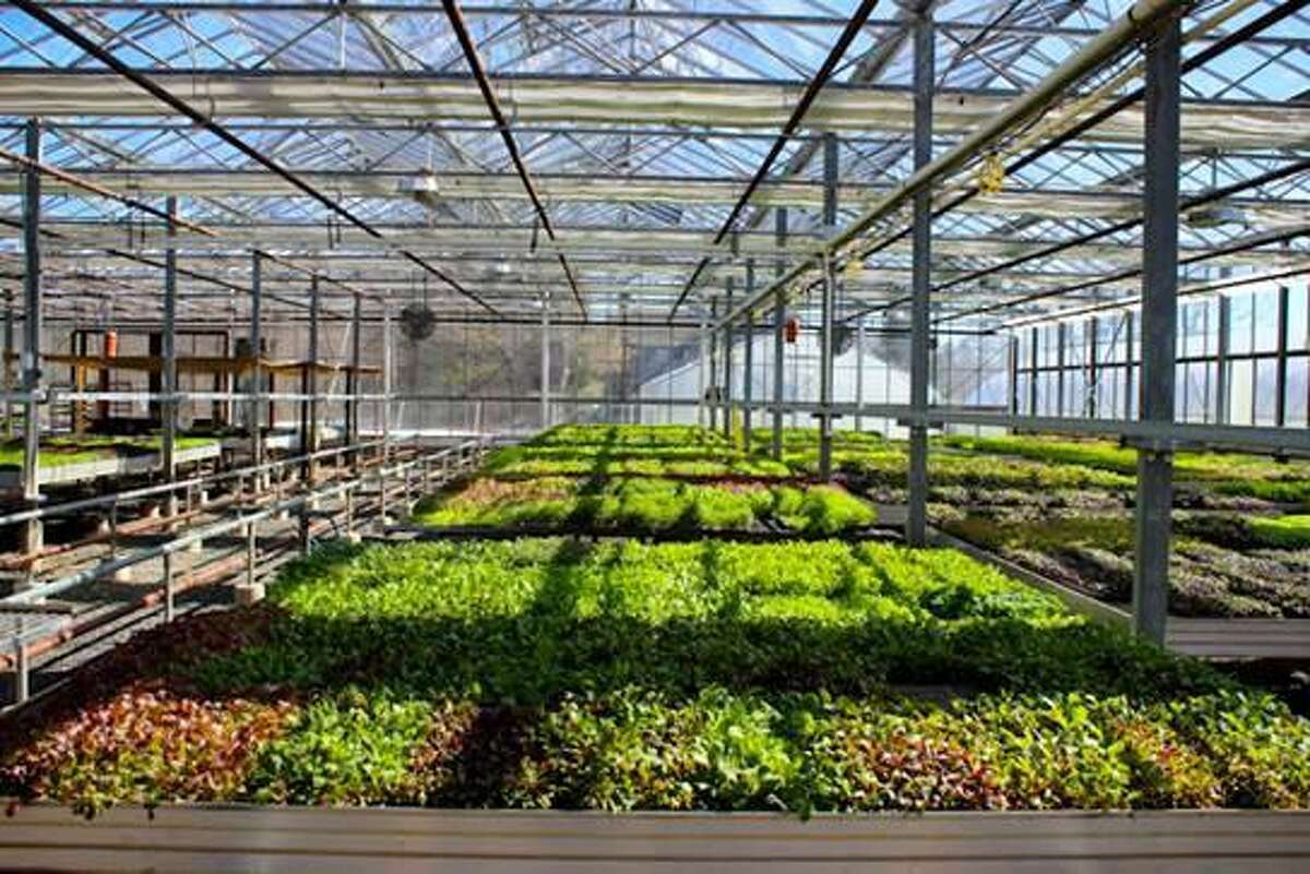 Gilbertie's Herb Gardens, a fourth-generation local family farm that utilized grants and financial incentives to make major upgrades to operations, saving about $27,000 annually.