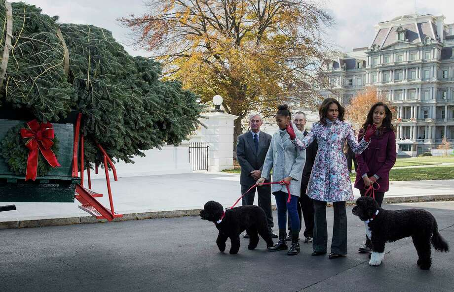 U.S. First Lady Michelle Obama, center, and her daughters Malia, right, with Bo, and Sasha, with Sunny, greet the White House Christmas tree as it arrives at the White House in Washington on Friday, Nov. 28, 2014. Photographer: Joshua Roberts/Bloomberg Photo: JOSHUA ROBERTS