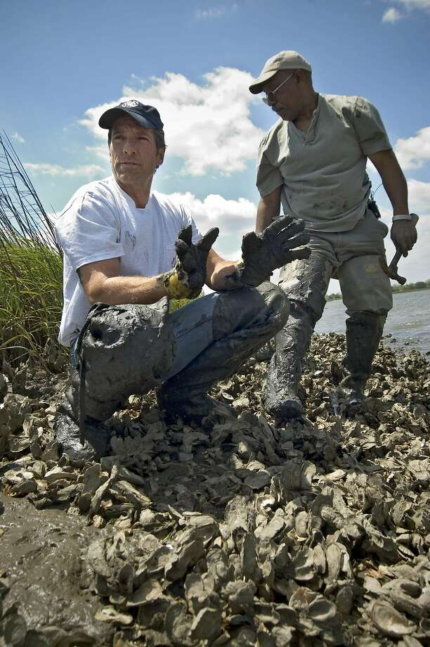 DCI ID: DIRTY JOBS.009  Description: Dirty Jobs host Mike Rowe gathers oysters with oyster reef worker Ed Palmer  Rights Notes: For Show Promotion Only  Photographer: Wilson Baker / Getty Images  Credit: Discovery Channel  Image Post Date: 05-Jul-2005