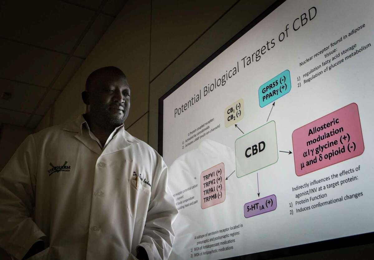 Dr. Elias Jackson president of research and development at Vyripharm Biopharmaceuticals takes a look at a slide with the potential biological targets of cannabidiol. Vyripharm is specializing in the real time effects of drugs in patients and modify doses as needed. Wednesday, April 26, 2017, in Houston. ( Marie D. De Jesus / Houston Chronicle )