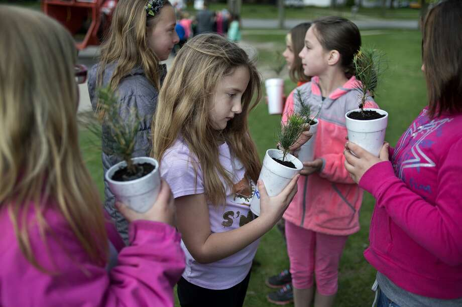 Plymouth Elementary School fourth-grader Addison Freeman, center, inspects her white pines sapling as part of an Arbor Day celebration at the school Friday morning. Volunteers from the City of Midland, Dow Gardens and The Dow Chemical Co. visited Siebert, Adams, Woodcrest and Plymouth Elementary schools to teach students about Arbor Day, the importance of trees and to plant a tree at the school. Photo: Brittney Lohmiller/Midland Daily News/Brittney Lohmiller