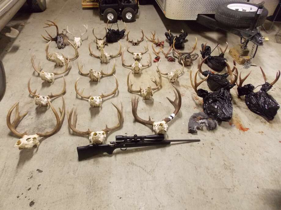 Deer skulls lie on the ground in a photo obtained during a poaching investigation by the Washington Department of Fish and Wildlife. Many of the photos were taken off the devices of the suspected poachers themselves.Warning: Graphic images ahead. Photo: Washington Dept. Of Fish And Wildlife