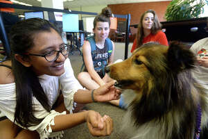 Lamar's Dharati Patel enjoys a moment with Suzi, one of several therapy dogs from the group Paws 4 Love that are spending time at the library helping students de-stress as they prepare for final exams this week. Looking on are fellow students Katie Cook Douglas (center) and Bethany Mobley. The group regularly comes to the library during finals weeks throughout the school year, offering a much needed break and bringing smiles to the faces of those whom they encounter. Photo taken Tuesday, May 2, 2017 Kim Brent/The Enterprise