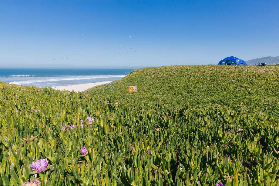 The Bay Area is unpleasantly hot right now. Click through the slideshow to see the best day trips to escape the Bay Area heat this week: Photo: Peter Prato, Special To The Chronicle