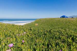 A view of the campground at Half Moon Bay State Beach on May 1st, 2017.