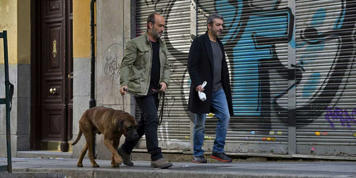 A man flies from Canada to Barcelona to visit an old friend who is terminally ill in this award-winning Spanish film. Truman is the dying man's dog, who will need a new home.