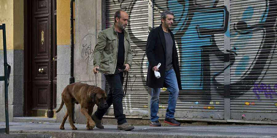 """A man flies from Canada to Barcelona to visit an old friend who is terminally ill in this award-winning Spanish film. Truman is the dying man's dog, who will need a new home. """"It's a small, perfect movie,"""" writes film critic Mick LaSalle, who insists you should see it even if you think you don't want to. **** Watch the trailerRead the full review  Photo: Palace Films, TNS / Los Angeles Times"""