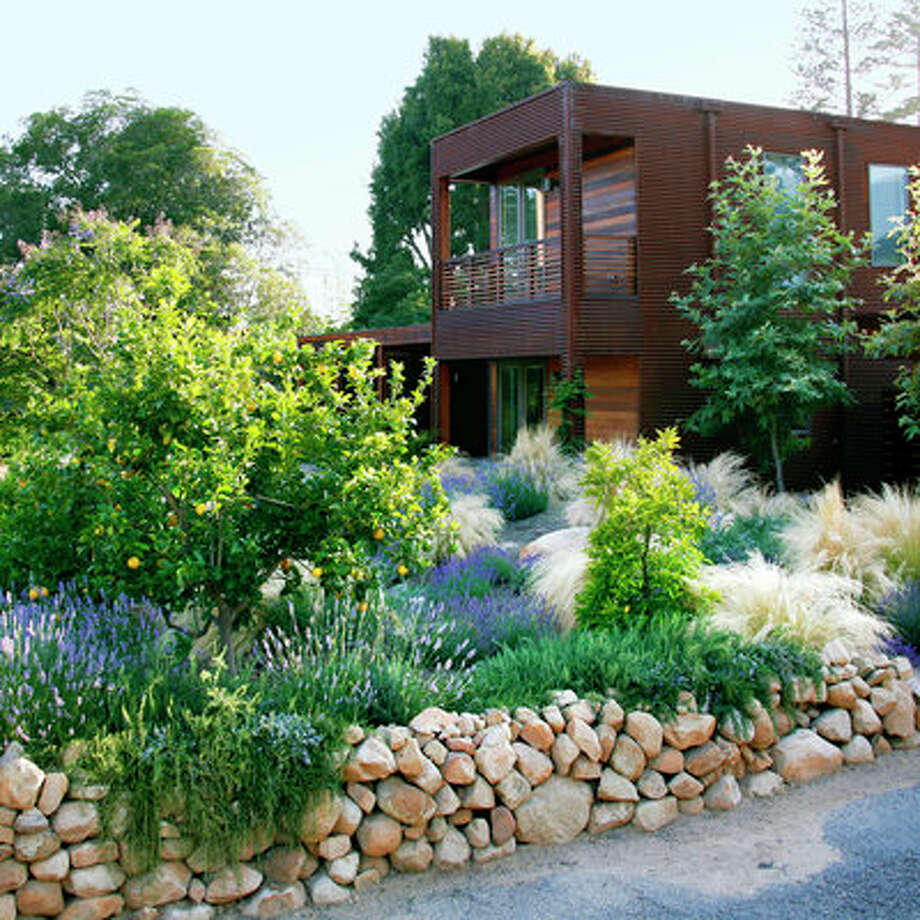 "Losing the lawnIt looks vibrant, with flowering and fruiting plants, shade trees, and grasses that shimmer like spun gold in sunlight. But this garden, fronting a custom prefab home near downtown Santa Barbara, actually thrives on very little water. ""It needed to be super-green to match the house,"" explains landscape designer Margie Grace, ""with a naturalistic feel and the strong sense of place. It needed light and movement.""Before the new landscape went in, piles of sandstone boulders—all unearthed during site preparation for the home—populated the lot. Grace incorporated the boulders into the garden, using them to form gentle mounds and swales that help prevent storm-water runoff, and to build walls. Then she chose mounding shrubs and soft grasses, which are watered by a seasonally adjusted drip-irrigation system. Paths are permeable. Photo: Holly Lepere"