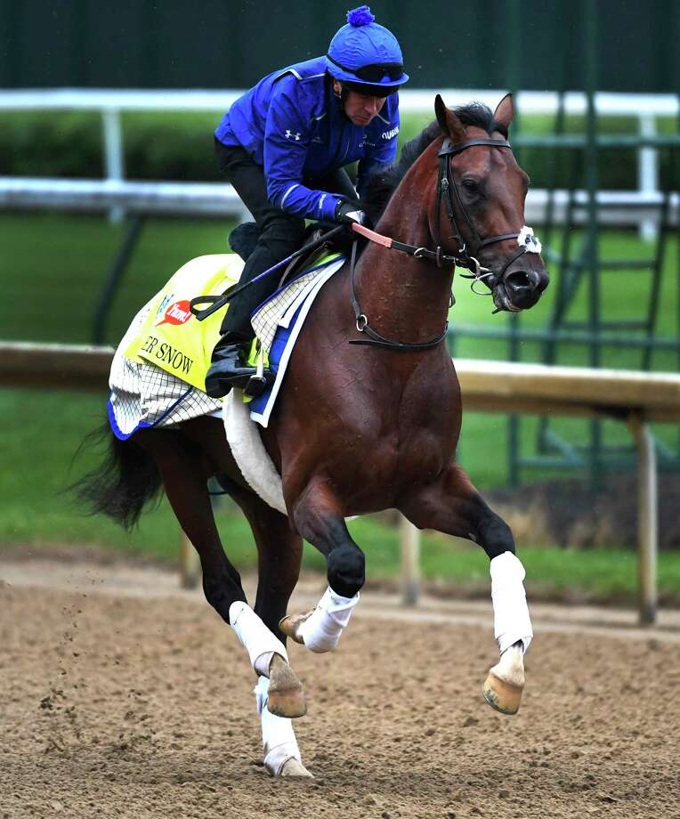 Thunder Snow owned by Sheik Mohammad of Dubai goes out for exercise Wednesday morning May 4, 2017 in preparation for Saturday's 143rd running of the Kentucky Derby at Churchill Downs in Louisville, Kentucky.  (Skip Dickstein/Times Union) Photo: SKIP DICKSTEIN