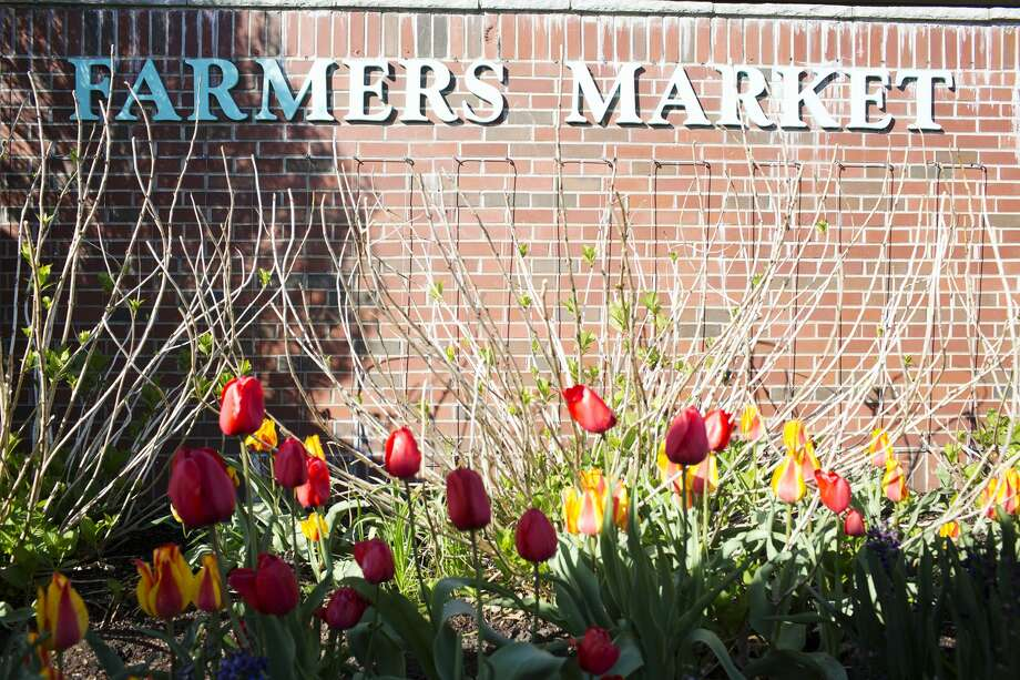 Farmers Market opening day on Saturday. Photo: Theophil Syslo