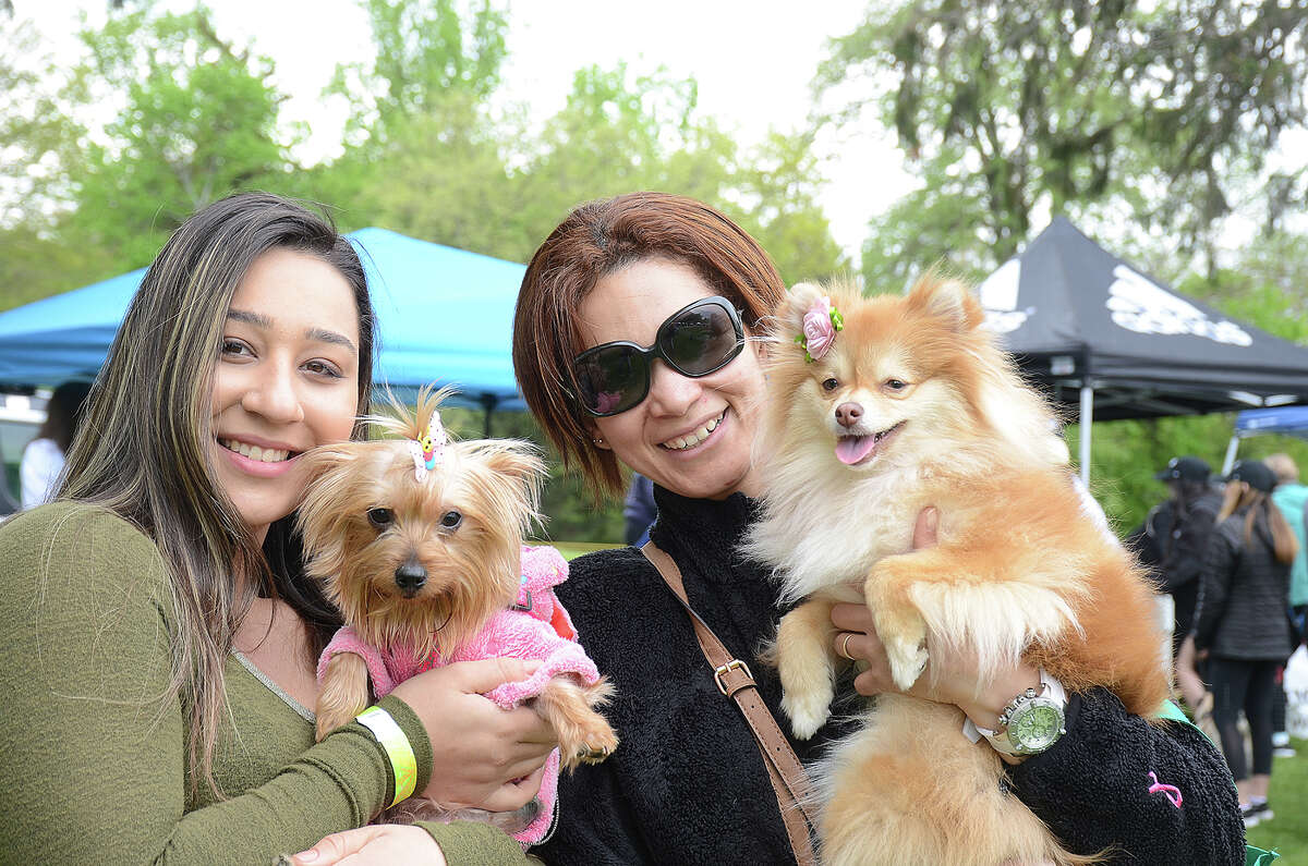 The Westport-Weston Chamber of Commerce held its second annual Westport Dog Festival on Sunday, May 7, 2017, at Winslow Park. Festival-goers and their dogs enjoyed vendors, food trucks, face painting, training sessions, a doggy obstacle course and more. Were you SEEN?