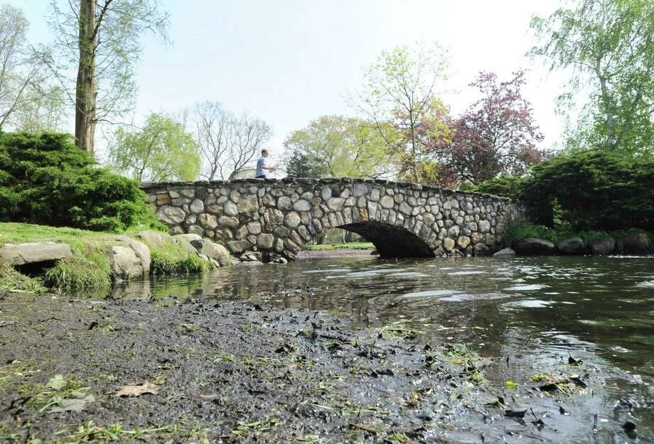 Muck can be seen clogging a waterway in Binney Park Pond, Old Greenwich, Conn., Saturday, April 29, 2017. Photo: Bob Luckey Jr. / Hearst Connecticut Media / Greenwich Time