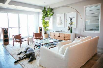 Move To S F Brings New Home And New Career In Interior Design Sfchronicle Com