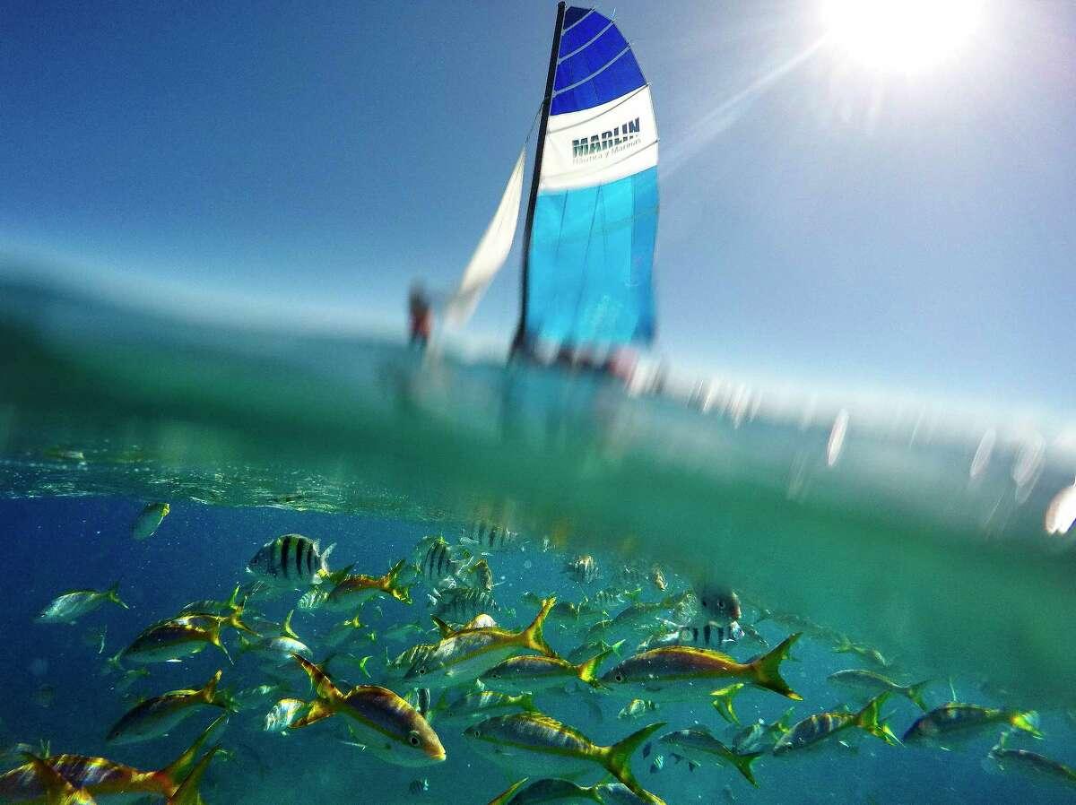 Fish swim under a catamaran Thursday, Jan. 19, 2017 in Varadero, Cuba. ( Michael Ciaglo / Houston Chronicle )
