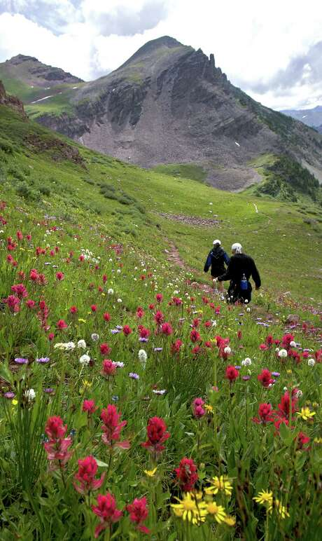 Summer Hiking and Wildflowers in Aspen, Colo.