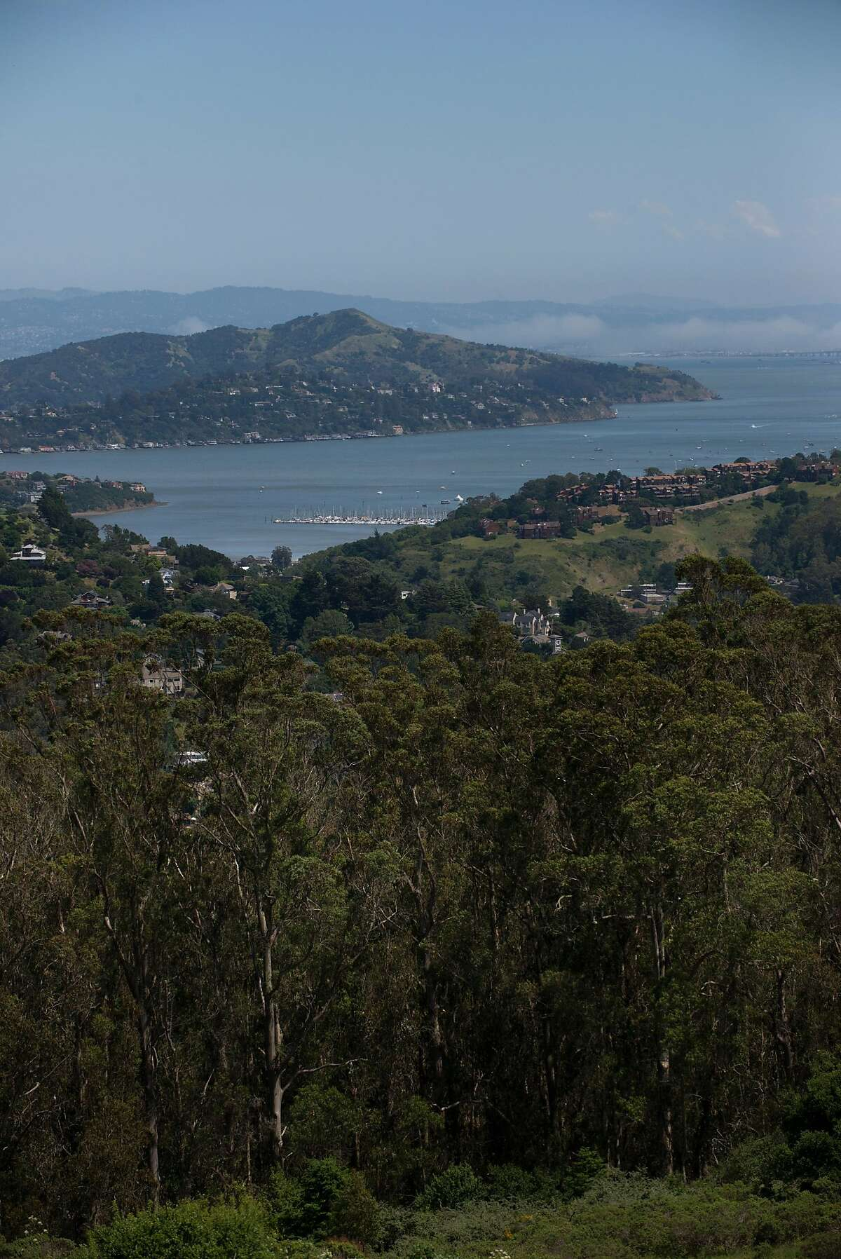 A view of Marin from the Panoramic Highway. May 4, 2017
