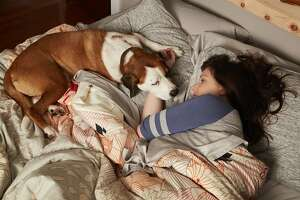 Martin and his human, Nan (Alison Tolman) in comedy 'Downward Dog' on ABC.