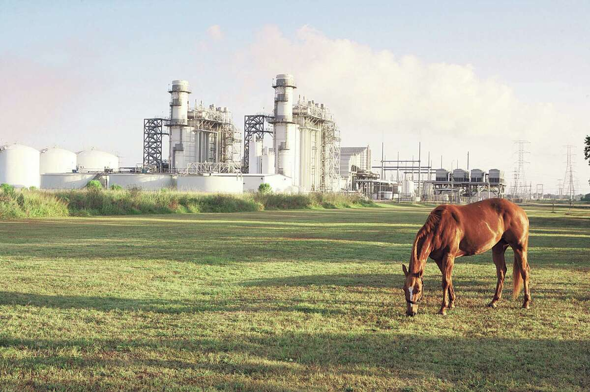 A horse grazes near Calpine's Brazos Valley Power Plant in Richmond, Texas. The company has a fleet of natural gas fired plants and is uniquely suited to take advantage of the demands for cleaner-burning electricity generation.