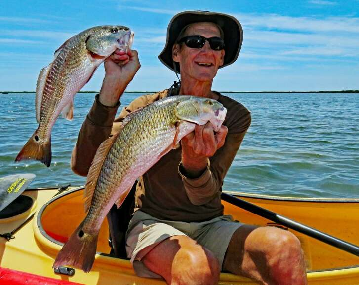 Fred Krebs of Fulton, who averages five days a week kayak fishing and has logged an estimated 7,000 miles of paddling over seven years, displays two keeper redfish on the east side of Brown & Root Flats.