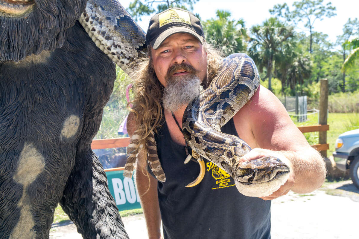 Dustin Crum recently caught a massive 16-foot 10-inch Burmese python in the Florida Everglades. The invasive snake is being hunted due to hurting native wildlife populations.