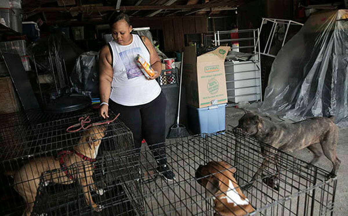 Asia Davis, 23, feeds her dogs Chase, (from left), Mighty and Lana, in her grandmother's garage on Friday, March 3, 2017, in Houston. Most of Davis' belongs have been moved in to her grandmother's garage after she moved back in because of the lack of affordable housing.