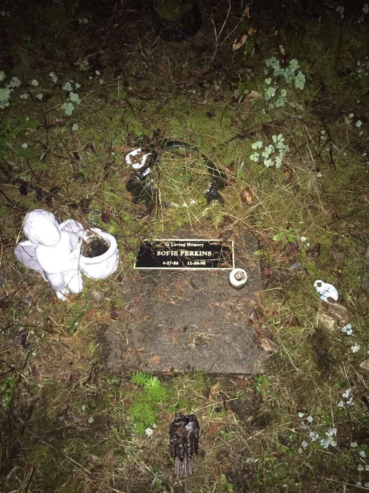 Until recently, the remains of Sophie Perkins were marked by a plaque under a tree in Washington.