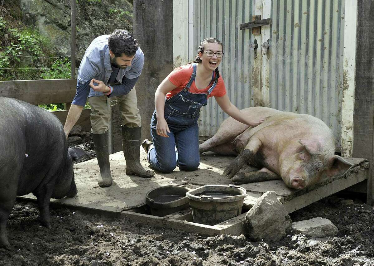 Joe Bonitatebus, 24, and Tiffany Paltauf, 20, with Maybelle and Petunia, their two pigs at Sleepy Pig Farm in Redding, Friday, May 12, 2017.