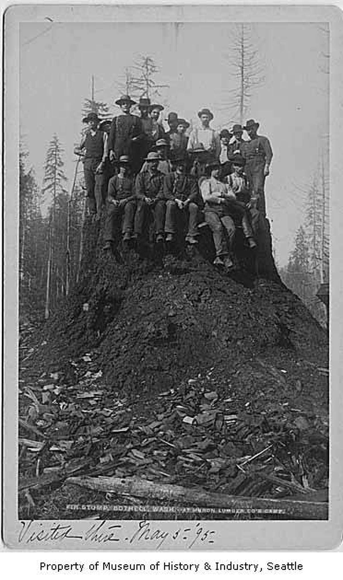 In this photo, taken around 1892, a group of men post atop a massive fir stump near Bothell.