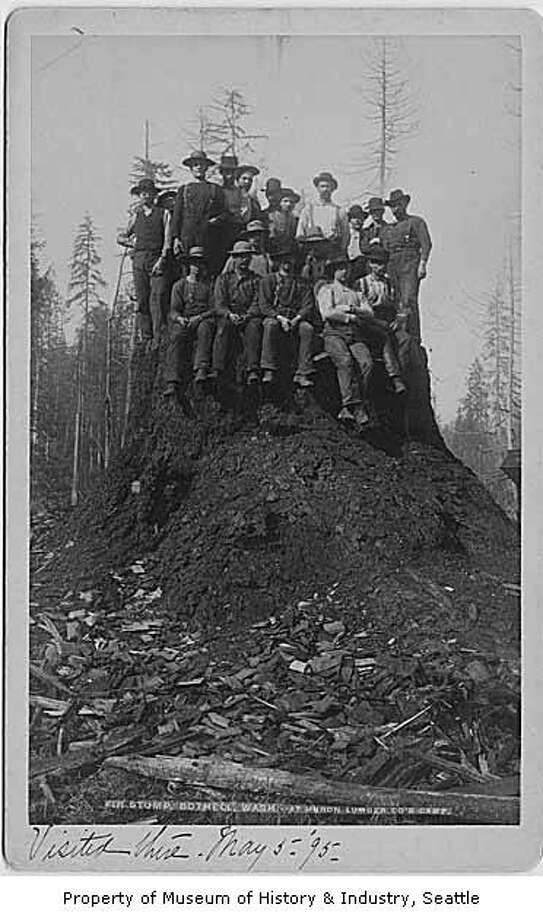 In this photo, taken around 1892, a group of men post atop a massive fir stump near Bothell. Photo: Courtesy MOHAI