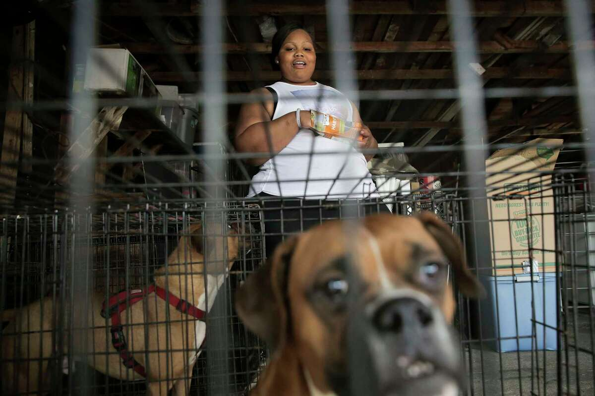 Asia Davis, 23, feeds her dogs Chase, left and Mighty in her grandmother's garage on Friday, March 3, 2017, in Houston. Most of Davis' belongs have been moved in to her grandmother's garage after she moved back in because of the lack of affordable housing.