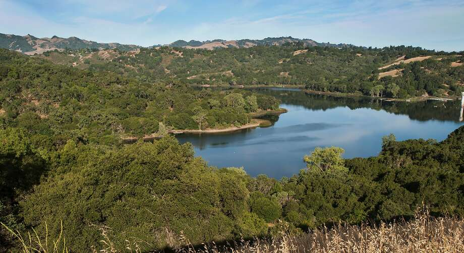 Lafayette Reservoir, nestled in a pocket of the East Bay hills near Highway 24, is in full transition from spring to summer with temperatures in the 80s Photo: Tom Stienstra, Courtesy EBMUD