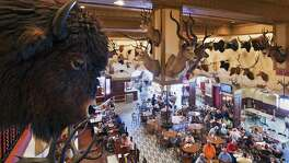 Buffalo heads and countless other animal trophies decorate the walls and bar area of the Buckhorn Saloon and Museum.