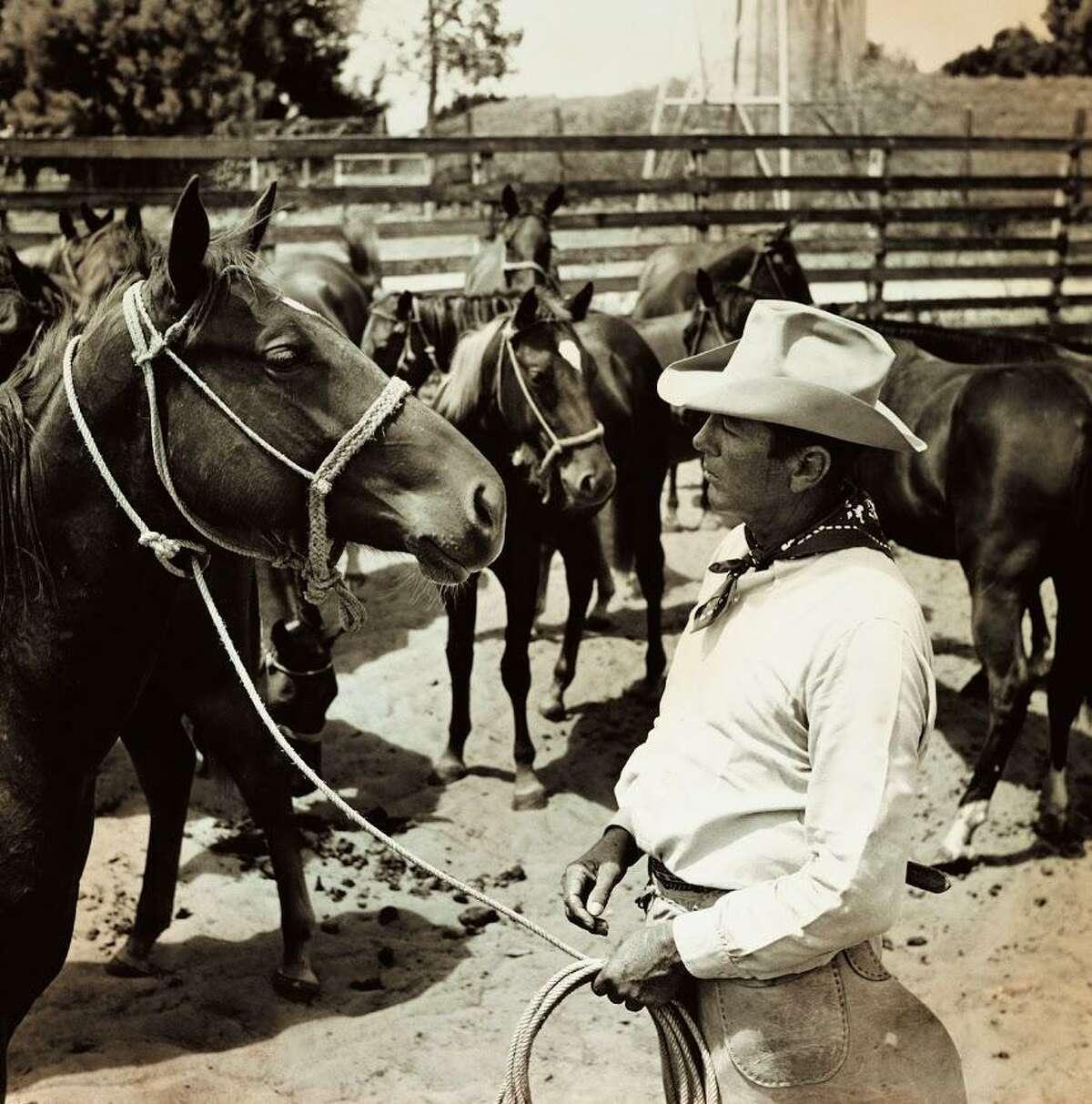 Bob Kleberg Jr. had a way with horses, including these mares, circa 1941.