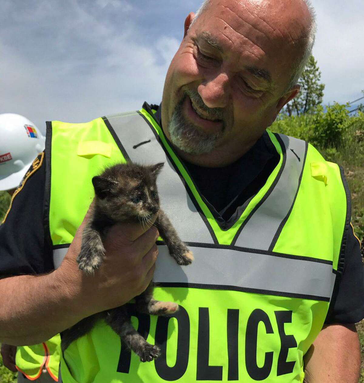 """Norwalk Police Department Officer Russell Oullette one of three abandoned kittens that he rescued from a construction site on Reed Street on Tuesday, May 16, 2017. """"The kittens were in harm's way of the large construction vehicles at the site. The kittens were turned over to animal rescue and are in good condition,"""" Norwalk police posted on their Facebook page."""