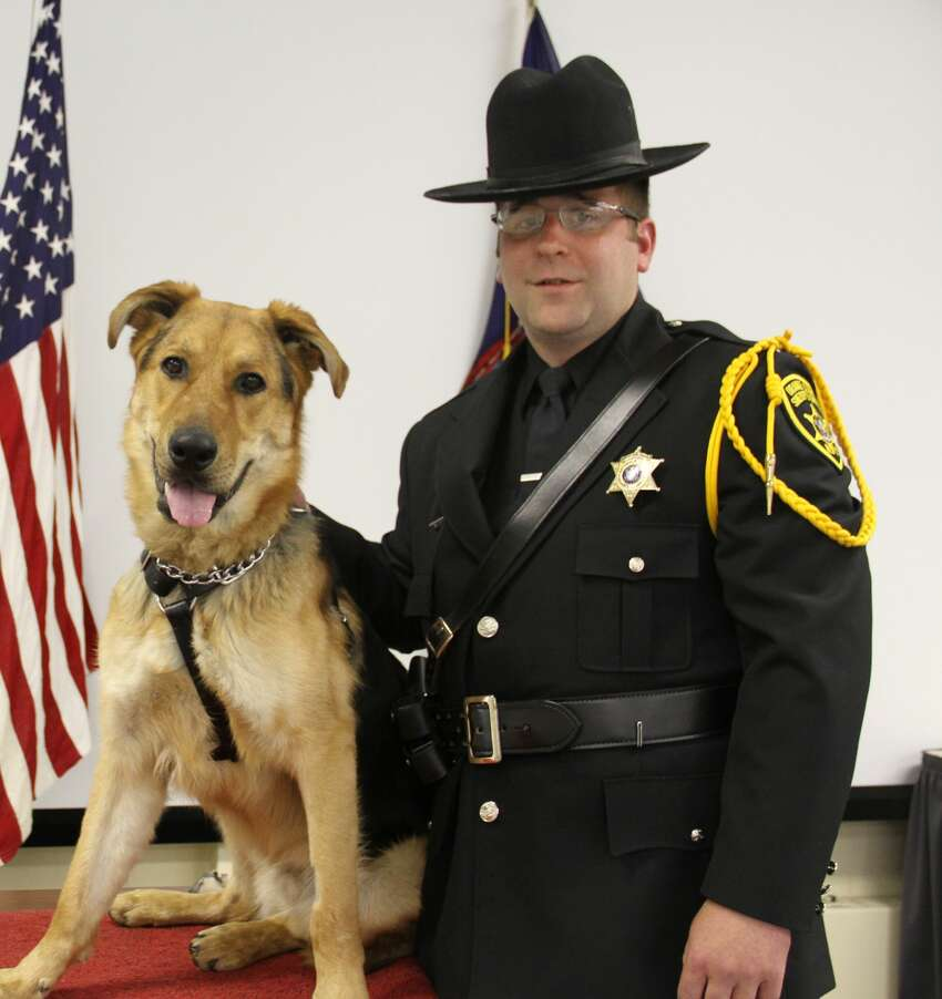 K9 Officer Walter will work with Orange County Sheriff's Office Investigator Justin Worden. He was donated by Mohawk Hudson Humane Society in Menands. (Governor's Office)