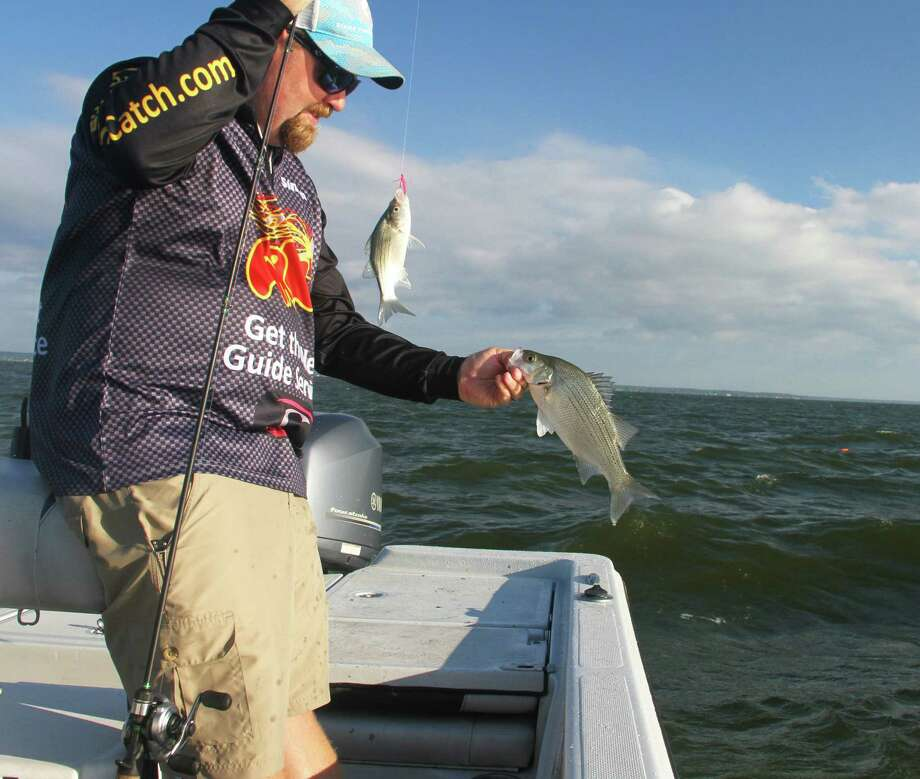 Simon Cosper lands a pair of white bass, two of dozens caught Tuesday from a school the Lake Livingston guide located by using electronic fish-finding technology. Photo: Shannon Tompkins
