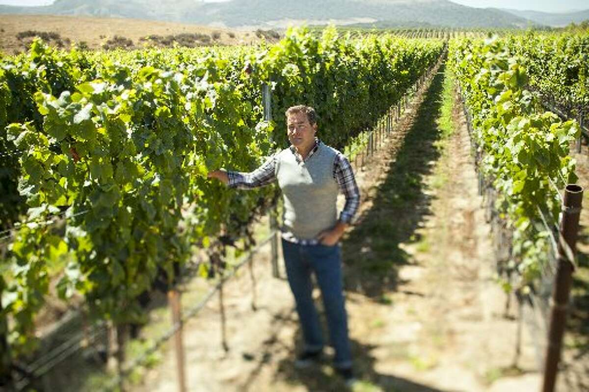 Steve Clifton, co-founder of Brewer-Clifton Winery, in Santa Barbara County vineyards.