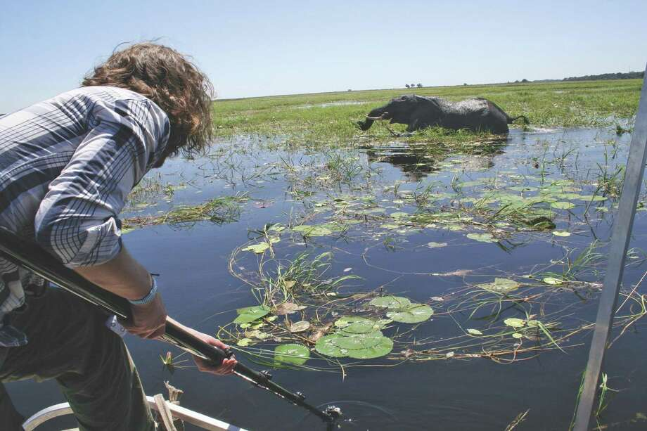 When Tauck, a Wilton-based operator of guided tours and cruises, partnered with BBC Earth several years ago, it allowed the 92-year-old travel company to expand its exotic offerings and experiences around the world, in such places as Botswana, in southern Africa. Photo: Tauck / Contributed Photo / Connecticut Post contributed