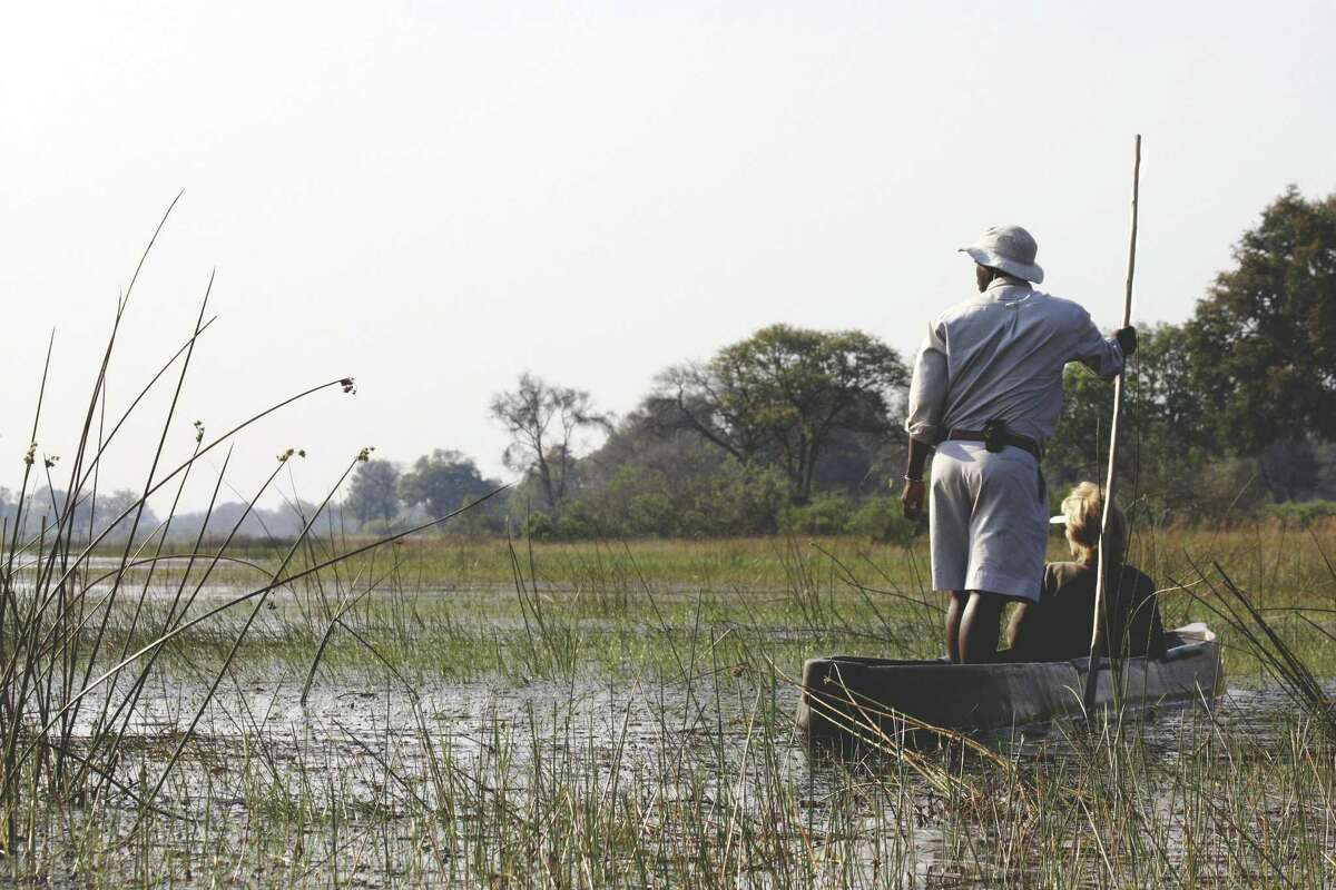 Wilton-based Tauck, an operator of guided tours and cruises for more than 90 years, has a series of popular safaris, including of one of the most popular that brings guests through Botswana, South Africa and Zambia. Here, a guest checks out the terrain in a dugout canoe.