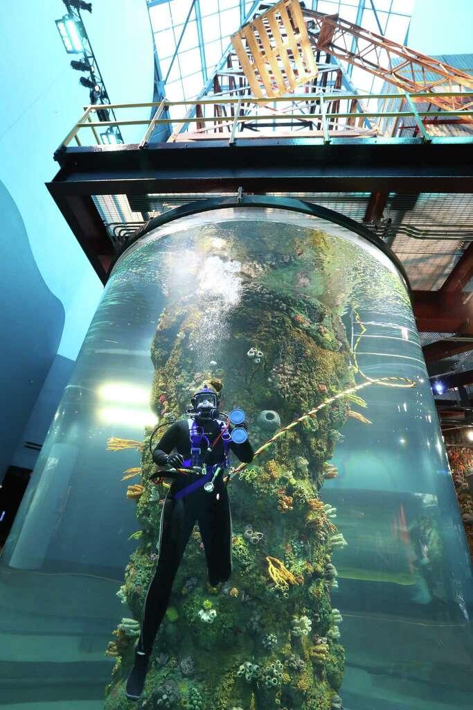 Moody Gardens unveils 37 million aquarium renovations Houston