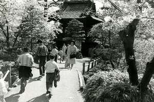 San Francisco Golden Gate Park Japanese Tea Garden. March 31, 1966