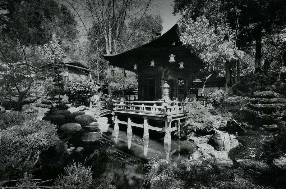 Stunning Archive Photos Show Golden Gate Park S Japanese